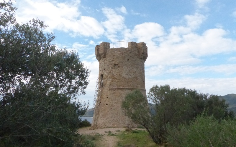 La randonnée de la Tour de Capanelle à Porto Pollo | Corse VTC