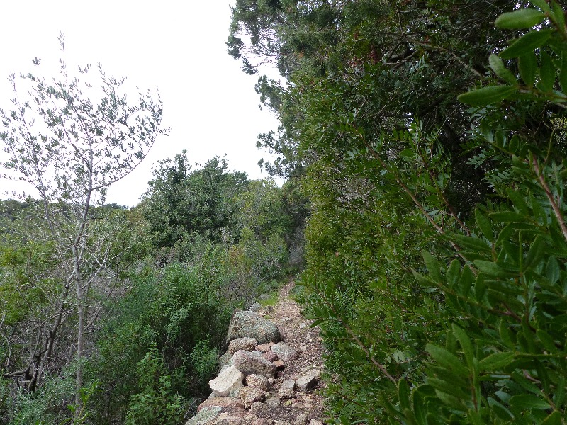 La randonnée de la tour de Capu Neru à Coti Chiavari