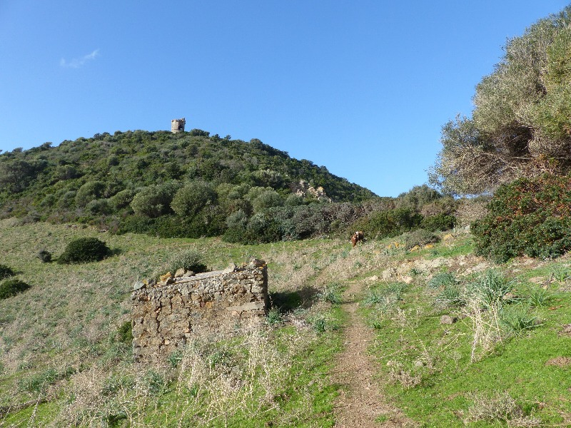 la randonnée de la tour d' Orchinu à Cargèse
