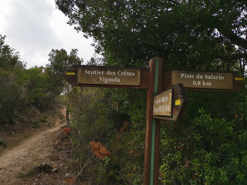 Monte Salario, randonnée à Ajaccio, randonnée du Mont Salario, randonnée en Corse | Corse VTC