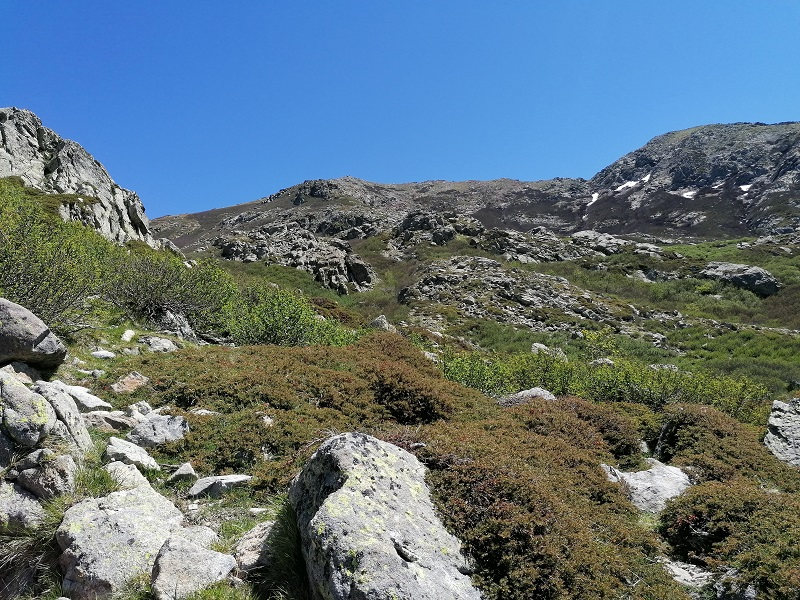 Randonnée du lac de Bracca au col de Scalella | Corse VTC
