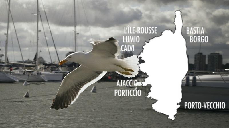 Navette pour croisière et transport de passagers dans les ports de Corse | Corse VTC